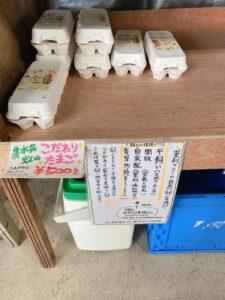 モリンガファーム 沖縄 モリンガ茶